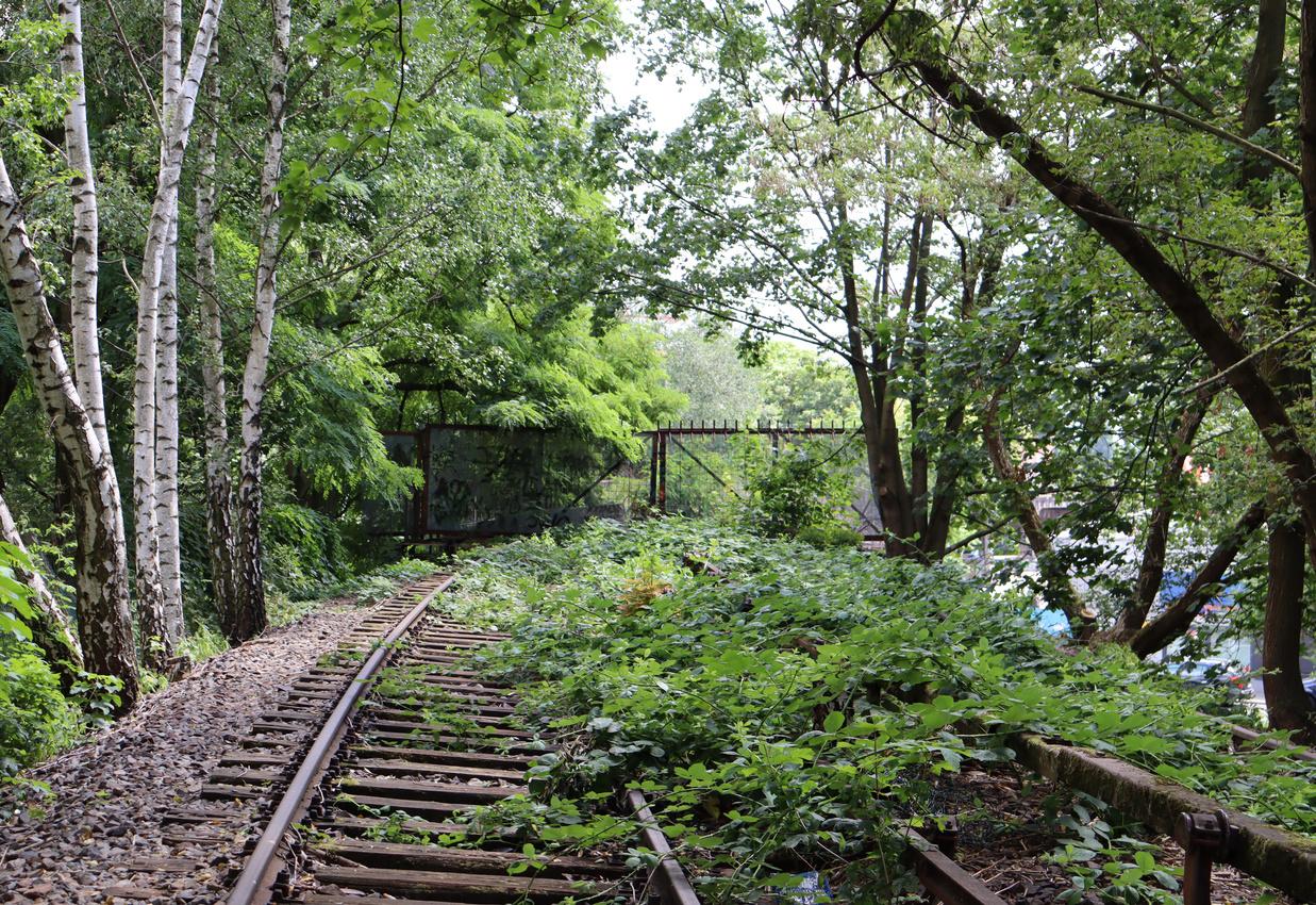 Forgotten train tracks from an S-Bahn closed long ago.