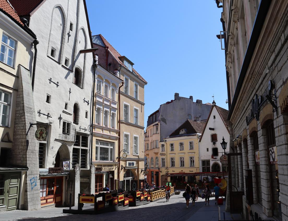Vanaturu Kael, Tallinn